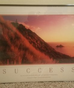 Success painting for sale.